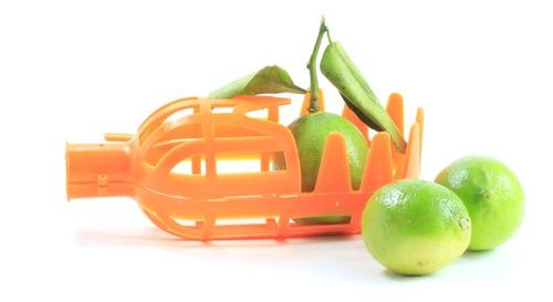 Recolector De Frutas
