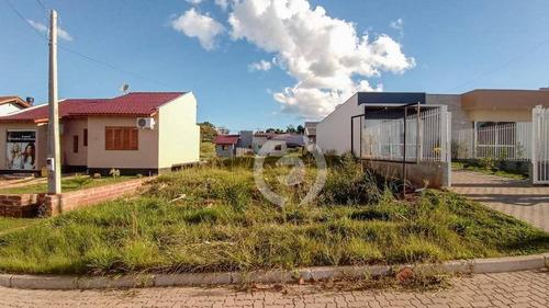 Imagem 1 de 3 de Terreno À Venda, 251 M² - Campo Grande - Estância Velha/rio Grande Do Sul - Te0409