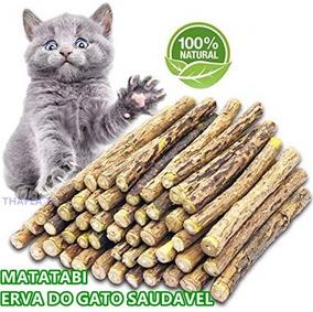 Catnip Limpador Dentes E Saude Gatos Matatabi 05 Unidade