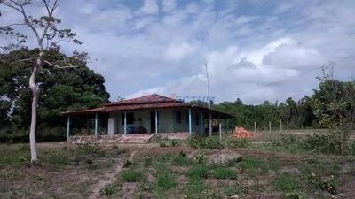 Fazenda À Venda Em Centro - Fa232549