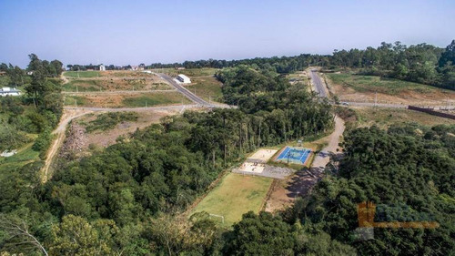Terreno À Venda, 377 M² Por R$ 125.178,00 - Bela Vista - Caxias Do Sul/rs - Te0125