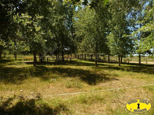 Imagen 1 de 10 de Campo En Exaltación De La Cruz R6 - Open Door - Luján