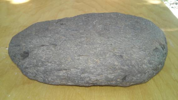 Tronco De Madeira Petrificada (fossilizado) - Rolado