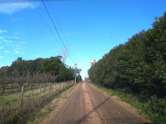 Vendo Terreno En Zona Rural, Quinta, Campo Chico, Negocio.