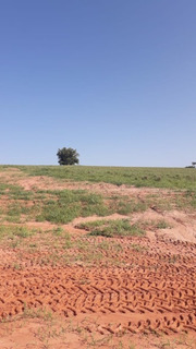 Fazenda 63 Alqueires No Pasto Martinópolis Sp Cód. Fma-1