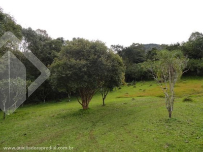 Terreno - Centro - Ref: 166932 - V-166932