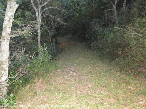 Área Rural Para Venda Em Mariana Pimentel, Linha Preta - Mariana Pimentel - 1066_1-420281