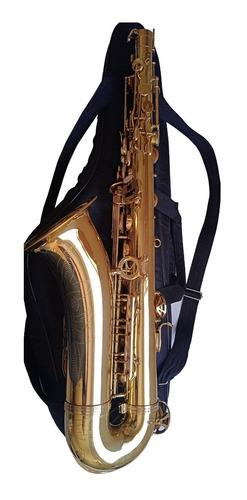 Sax Tenor Michael Wtsm35 Usado