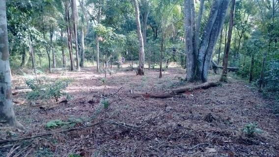 Terreno Bom Para Chacara Rodovia Dom Pedro - 6324
