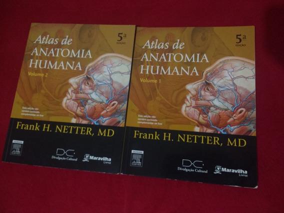 Atlas De Anatomia Humana - Netter 5° Edição