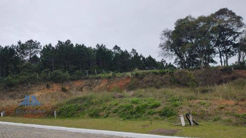 Terreno À Venda, 455 M² Por R$ 751.200,00 - Itacorubi - Florianópolis/sc - Te0225