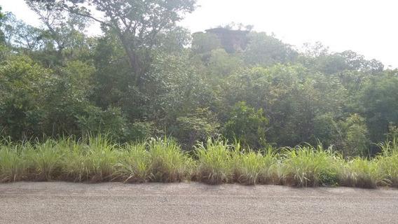 Fazenda Com Água E Luz Em Ponta Alta Do Tocantins - 268-im311187