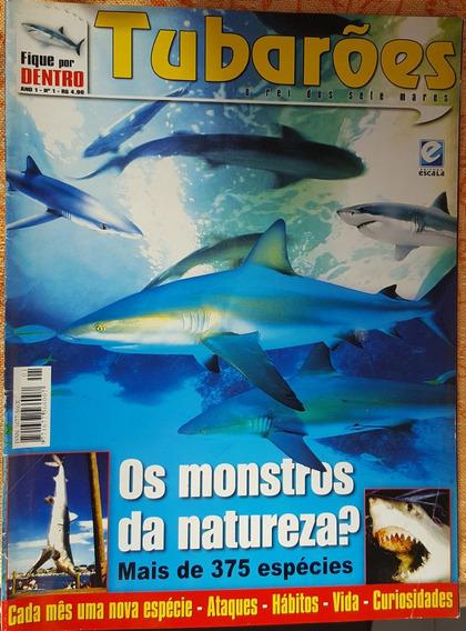 Revista Fique Por Dentro - Tubarões