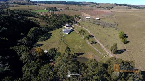 Chácara Com 4 Dormitórios À Venda, 45000 M² Por R$ 529.900,00 - Zona Rural - Caxias Do Sul/rs - Ch0003