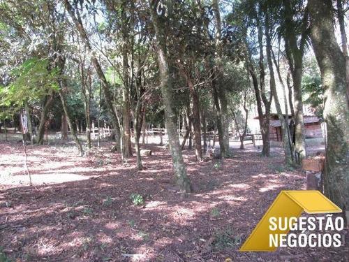 Chácara 12 Mil M2 Em Piedade Ribeirão Na Divisa - 3118