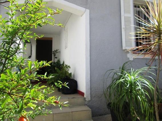 Casa Em Parada Inglesa, São Paulo/sp De 300m² 3 Quartos À Venda Por R$ 800.000,00 - Ca285841