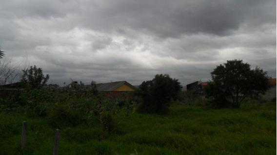 Terreno Para Venda Em São José Dos Pinhais, Ipe - 298002000_2-932358