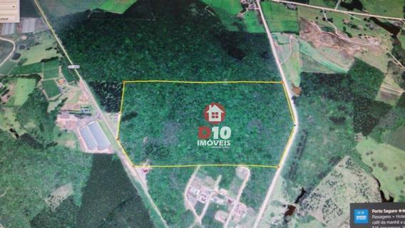 Terreno À Venda, 146000 M² Por R$ 1.452,70 - Comunidade De Rio Maior - Urussanga/sc - Te0957