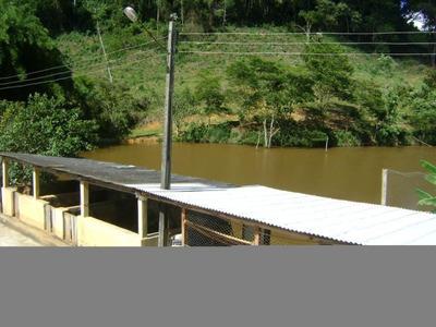 Fazenda Com 3 Quartos Para Comprar No Tres Coqueiros Em Simonésia/mg - 1276