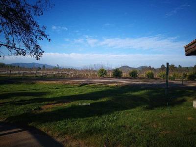 Terreno Con Siembra De Avena
