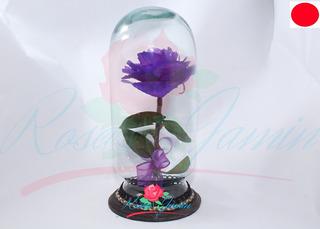 Rosa Rehidratada Color Morada