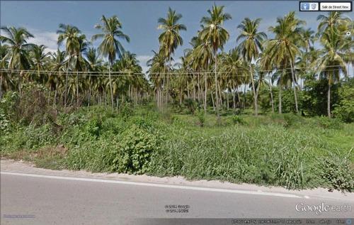 Terreno En Coyuca De Benitez La Playa Carretera Acap- Zihuatanejo Parcela 455