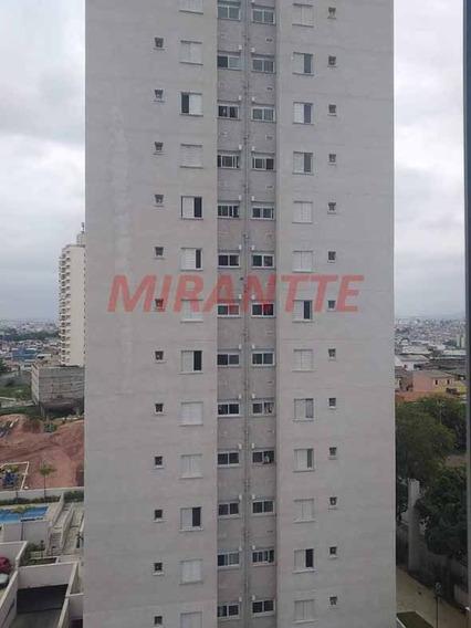 Apartamento Em Vila Nova Cachoeirinha - São Paulo, Sp - 333448