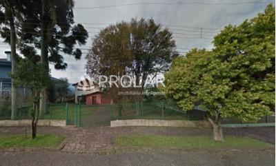 Terrenos - Cinquentenario - Ref: 6305 - V-6305