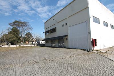 Barracão No Afonso Pena - São José Dos Pinhais