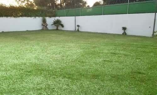 Colinas Del Bosque, Una Planta, T.550 M2, 3 Recámaras Jardín