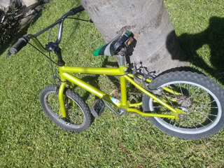 Bicicleta Bmx R20