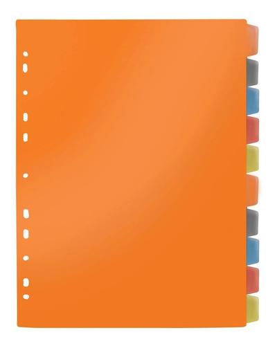 Divisória Fichário A4 Com Visor Coloridas C/10