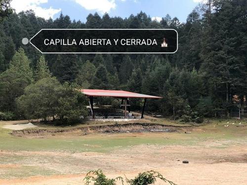 Imagen 1 de 11 de Terreno En Venta Espectacular Bosque Para Su Cabaña!