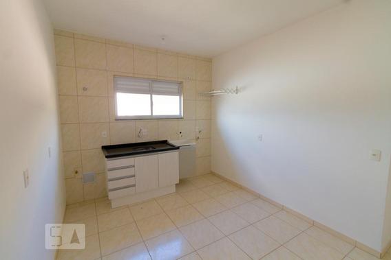 Apartamento Para Aluguel - Aririu, 2 Quartos, 40 - 893104713