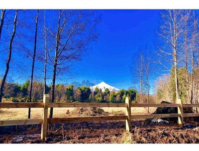 Camino Villarrica - Pucón 12