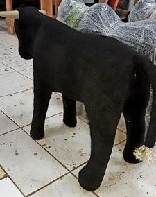 Vaca Parada / Corda Grátis / Cavalete Laçar /com E Sem Cupim