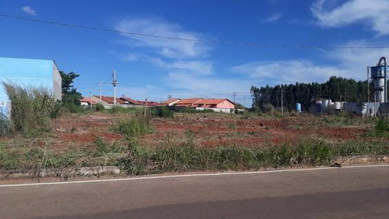 Área Em Guapó - Pointer! - 1032