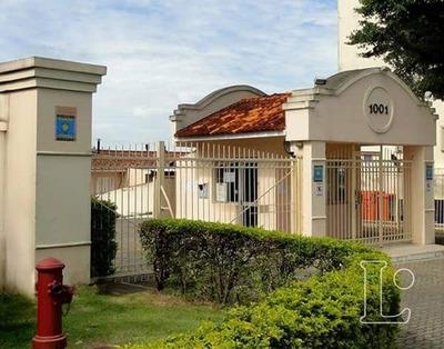Casa Condomínio Em Bela Vista Com 2 Dormitórios - Lu271745