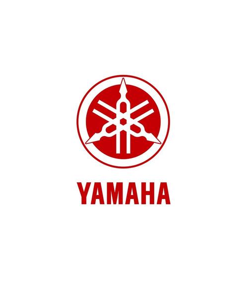 Deslizador Cadena Moto Yamaha Fz16 Original - Bondio