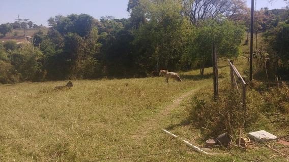Sítio Rural À Venda, São Bento, Artur Nogueira. - Si0070