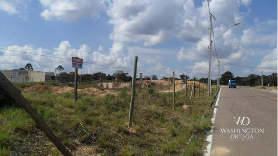 Terreno À Venda, 426 M² Por R$ 234.300 - Iguaçu - Araucária/pr - Te0196