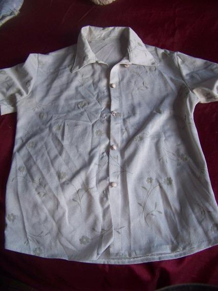 Camisa (515/420)