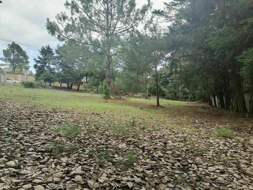 Imagen 1 de 10 de Terreno En Venta Los Alcanfores