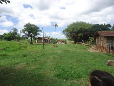 Vendo Uma Fazenda Em Santa Rosa Do Viterbo
