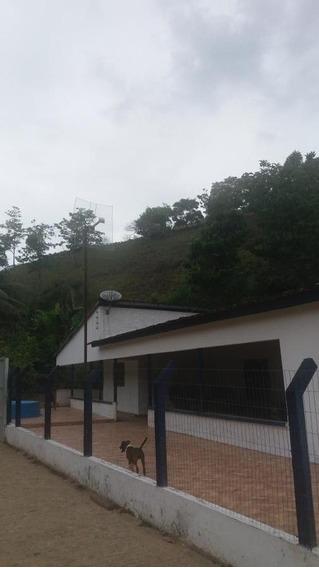 Apartamento Para Locação Em União Dos Palmares, Zona Rural - _1-1342351