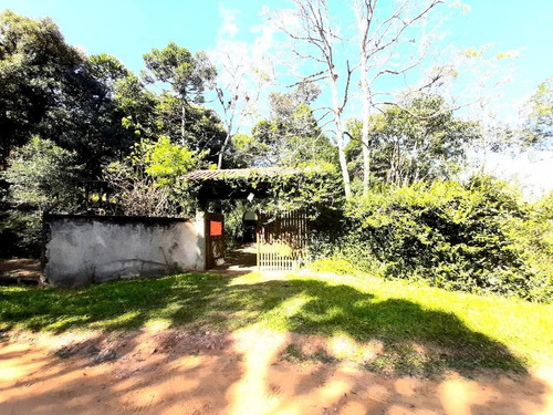 Chácara À Venda, 5000 M² Por R$ 300.000,00 - Borda Do Campo - São José Dos Pinhais/pr - Ch0065