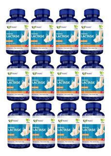 Kit 12 Enzima Lactase (intolerância A Lactose) 60 Caps 400mg