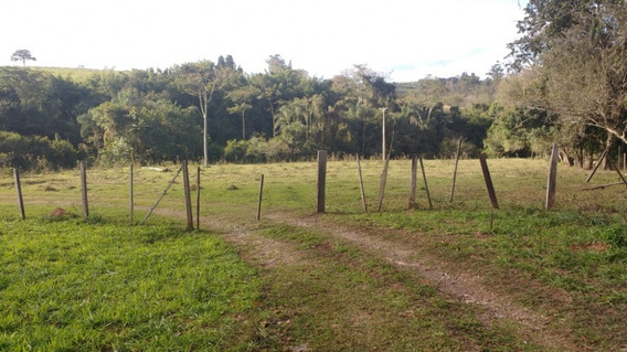 Terreno - Venda - Rural - Cod. 5334 - V5334
