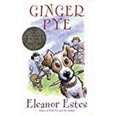 Livro - Literatura Estrangeira - Ginger Pye