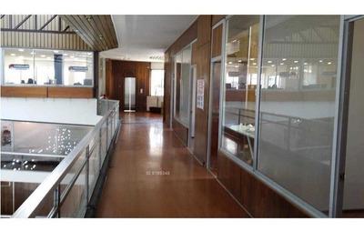 Providencia 2348, Metro Los Leones